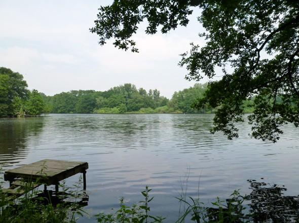 Seenlandschaft im Naturerlebnisgebiet Krickenbecker Seen - Flachshof Nettetal