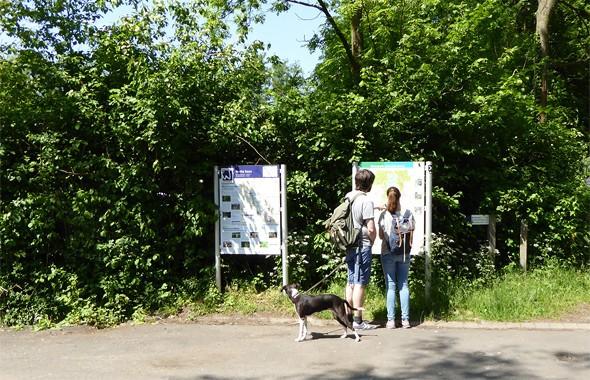 Wandern auf Premium Wanderwegen am Niederrhein im Naturpark Schwalm-Nette an den Nettetaler Seen