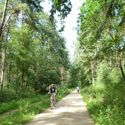 Ferienwohnung am Niederrhein NRW - Radeln Radwandern am Niederrhein