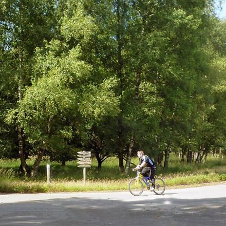 Urlaub mit dem Fahrrad am Niederrhein NRW - Radeln in der Freizeitregion Schwalm-Nette