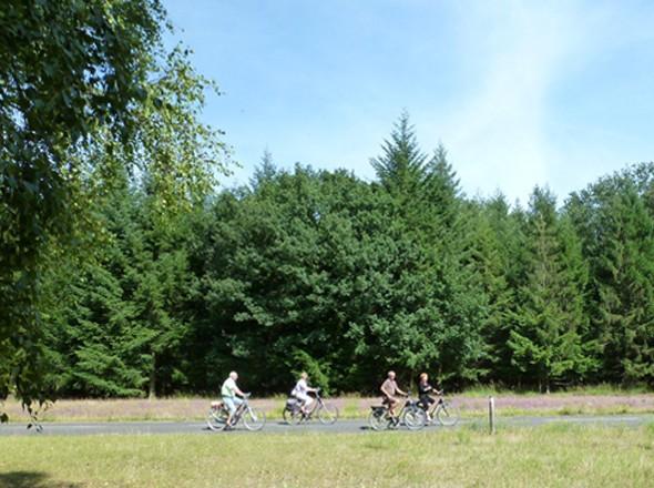 Radwander-Tipps Niederrhein NRW Kreis Viersen Radelregion Naturpark Maas-Schwalm-Nette