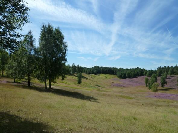 Wanderroutenplaner NRW. Wandern am Niederrhein - Wandern Naturpark Maas-Schwalm-Nette