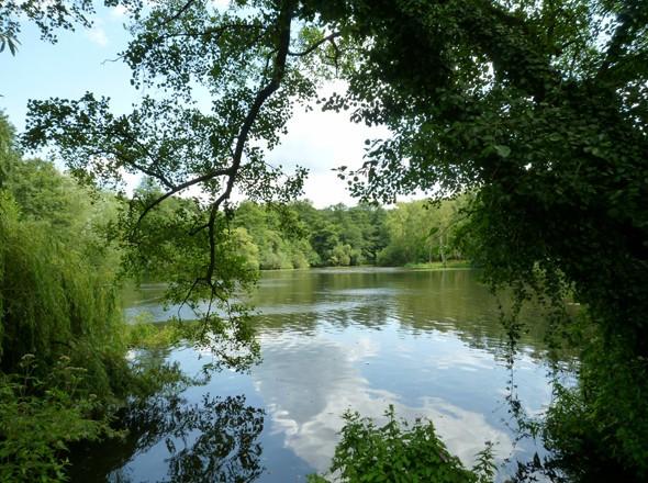 Premium-Wanderwege Naturpark Maas-Schwalm-Nette - Premium-Wanderparadies Wasser.Wander.Welt